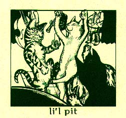 shot of the li'l pit debut 7 inch sleeve
