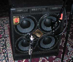 one of watt's eden d410xlt speaker boxes