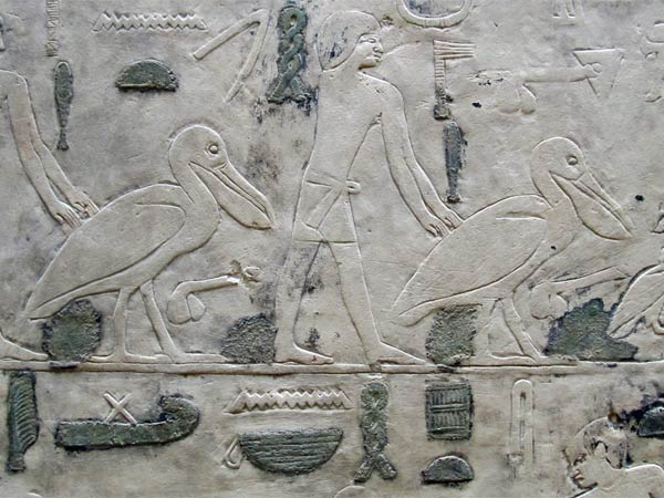 old egyptian stela with pelicans at the neue museum in berlin, germany on july 31, 2012